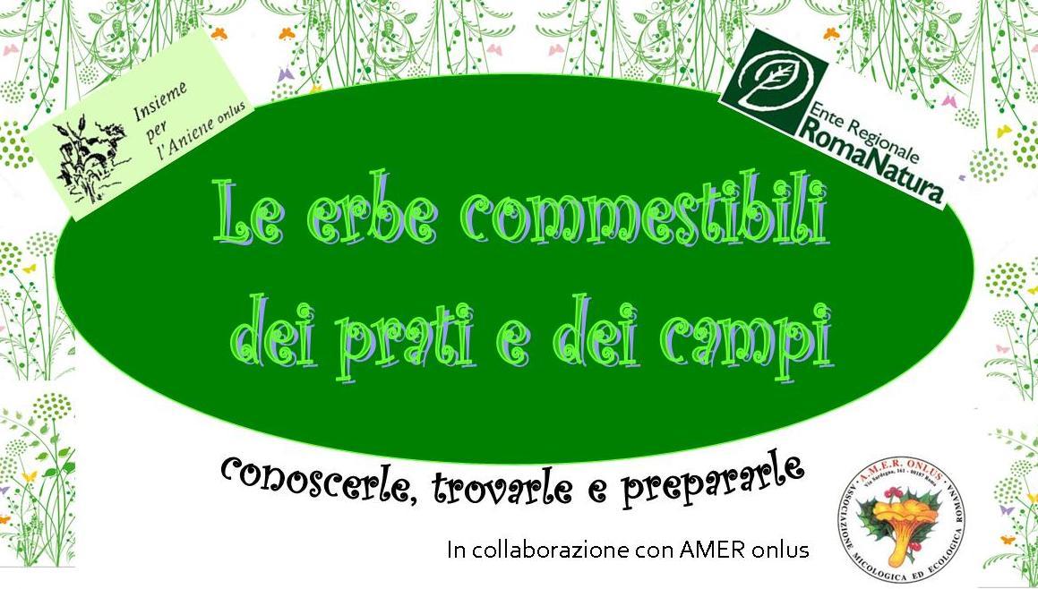 """Corso """"Le erbe commestibili dei prati e dei campi"""""""