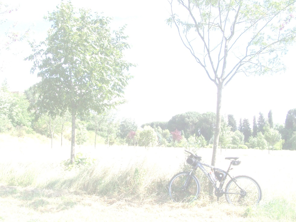 23 GENNAIO 2011   LUNGO IL FIUME IN BICICLETTA