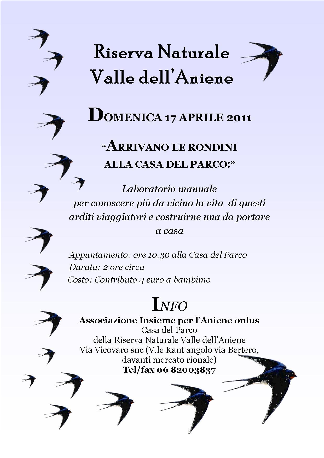 17 APRILE 2011 ARRIVANO LE RONDINI ALLA CASA DEL PARCO