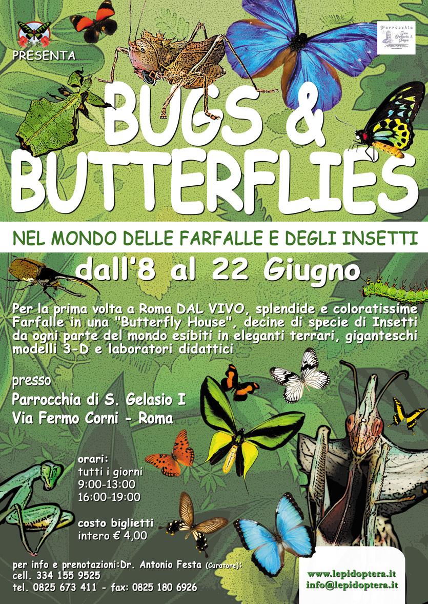 BUGS & BUTTERFLIES fino all 22.06- Nel mondo delle farfalle e degli insetti